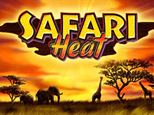 Safari Heat - автоматы Адмирал