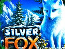 Silver Fox - автомат на деньги